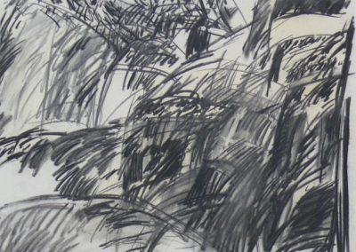 Ager 1967 Holzkohle Papier 52x43cm