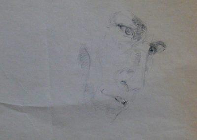 Selbst 1964 Bleistift Papier ca. 38x30cm